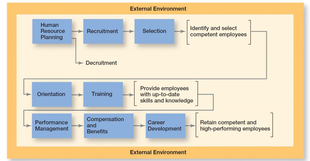 HR & Team Management - Human Resource Management Process; 3 Major steps within the environment