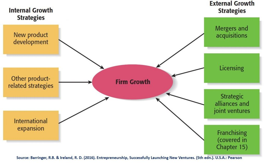 Firms Growth & Development can be done via either internal or external growth strategies, or a combination of both.