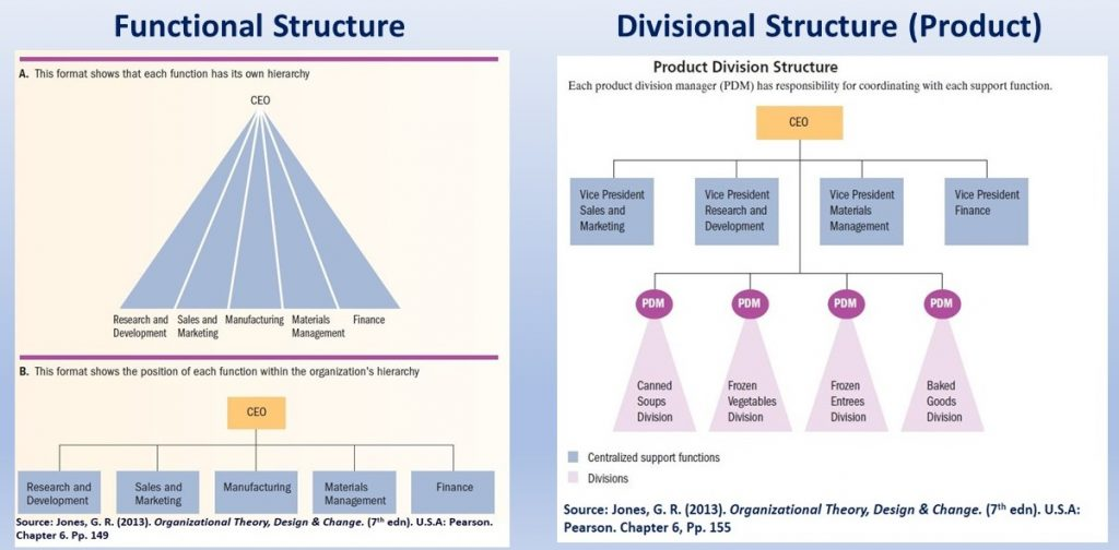 Functional & Divisional  (product) structures are possible shapes available for organizations - the WHO utilizes some of their features .