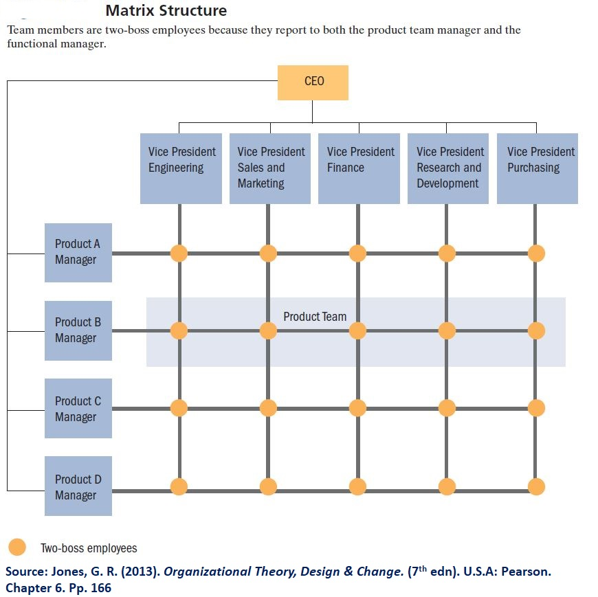 Matrix structure is very flexible and is used in projects where work teams are the primary blocks - It's the main structuring style for the WHO due to its organic features.