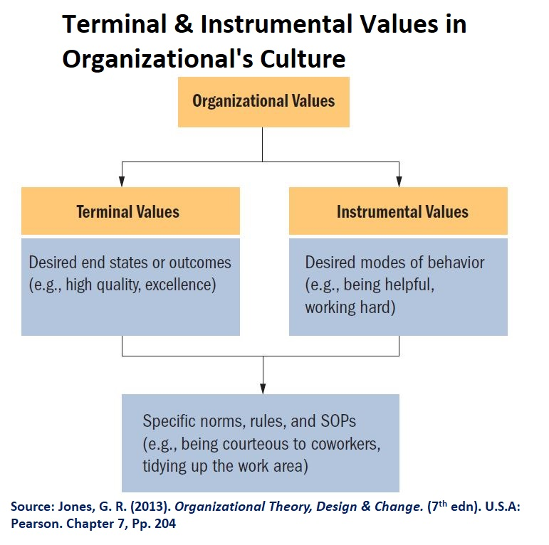 There are two types of values in organizational culture, which are terminal & instrumental values.