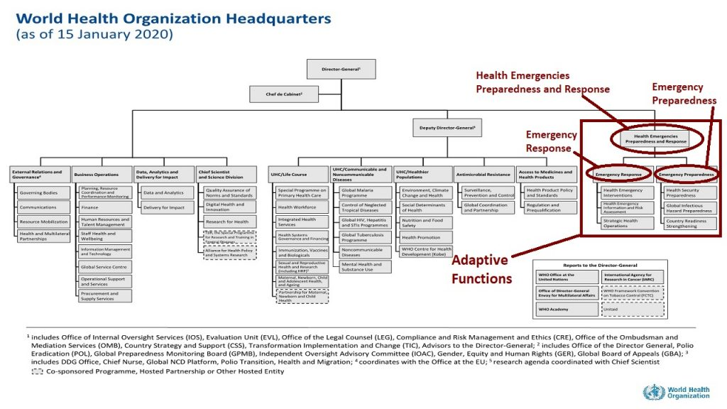 Organizational Structure & WHO , you can clearly see here the adaptive functions in the organogram its headquarters.