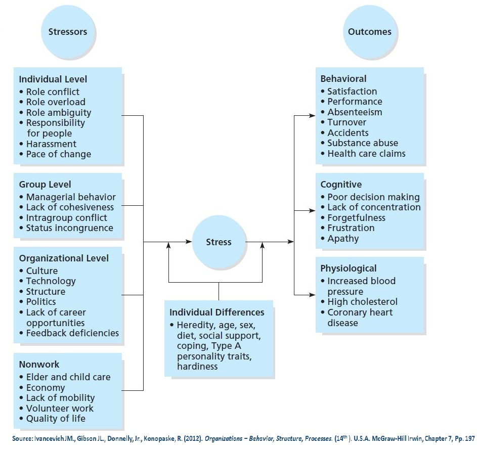 Stress model includes stress causes, outcomes and moderators.
