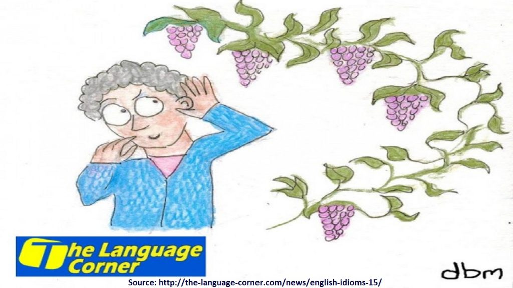 The grapevine is a term that describes informal communication in the form of rumors.