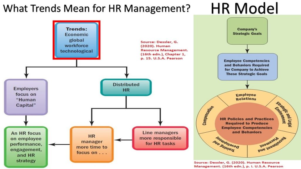 HR Distribution is one of the contemporary HR strategies and approaches.